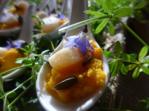 formation cuisine plantes sauvages