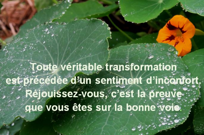 Capture Toute vritable transformation